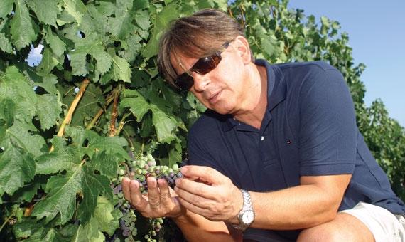 Visiting the Malatinszky Winery in Villány, Hungary